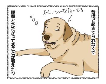 羊の国のラブラドール絵日記シニア!! 犬4コマ漫画「シニアなんだけど」2