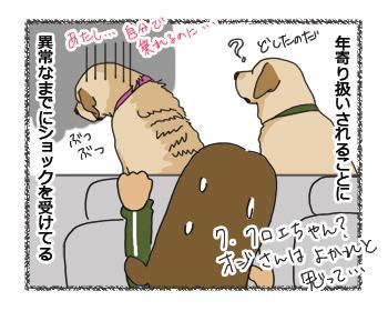 羊の国のラブラドール絵日記シニア!! 犬4コマ漫画「シニアなんだけど」4