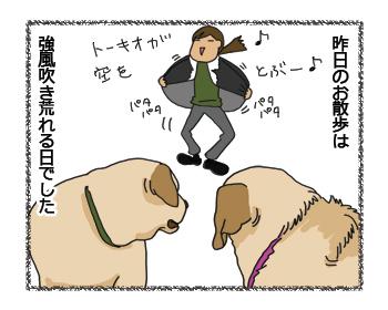 羊の国のラブラドール絵日記シニア!!、強風の日のお散歩は2