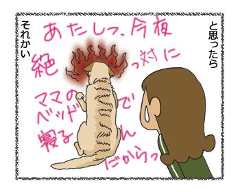羊の国のラブラドール絵日記シニア!! 4コマ漫画「クロエちゃんの憂い」4