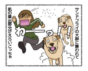 羊の国のラブラドール絵日記シニア!!修正記事1