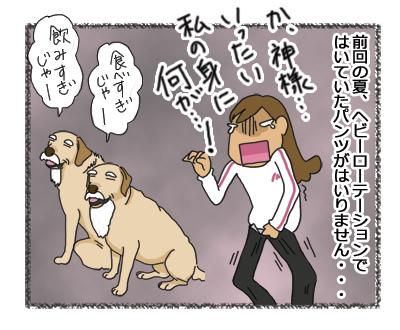 羊の国のラブラドール絵日記シニア!!1コマ漫画