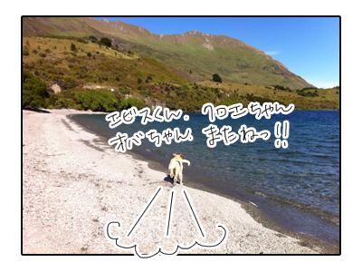 羊の国のラブラドール絵日記シニア!!写真日記4