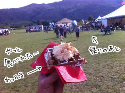 羊の国のラブラドール絵日記シニア!! ピクニック写真5