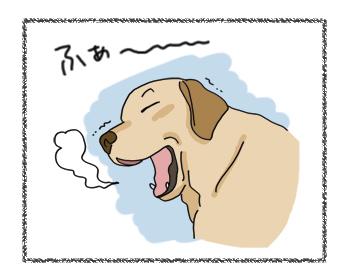羊の国のラブラドール絵日記シニア!!4コマ漫画「来たよ、来ちゃったよ」5