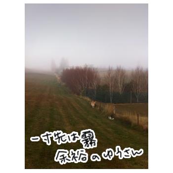 羊の国のラブラドール絵日記、一寸先は霧1