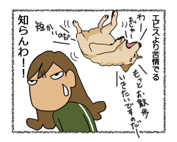 羊の国のラブラドール絵日記シニア!!、いたわって!4