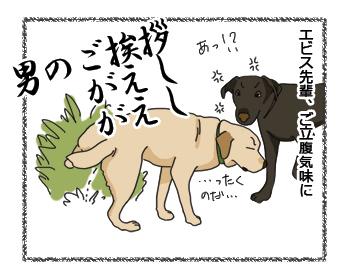 羊の国のラブラドール絵日記シニア!! 上書きの上書き4コマ犬漫画3
