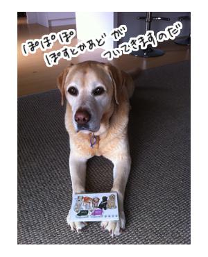 羊の国のラブラドール絵日記シニア!!引退犬支援カレンダー写真2