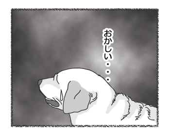 羊の国のラブラドール絵日記シニア!! 病気のときは?4コマ1