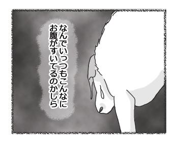 羊の国のラブラドール絵日記シニア!! 病気のときは?4コマ3
