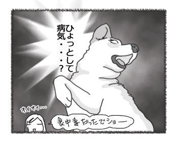25112012_4.jpg
