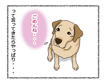 羊の国のラブラドール絵日記シニア!! 女子力炸裂犬漫画3B