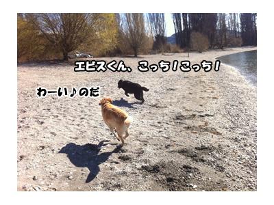 30082012_4.jpg