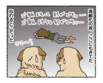 羊の国のラブラドール絵日記シニア!! わが身をふりかえる3コマ3