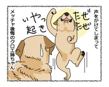 羊の国のラブラドール絵日記シニア!!姉ゴコロ4