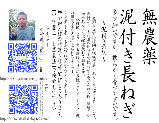 20121114182331ad7.jpg