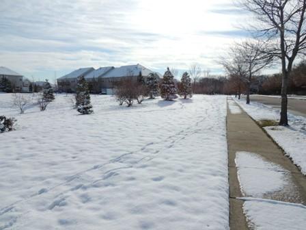 雪の後の晴れ