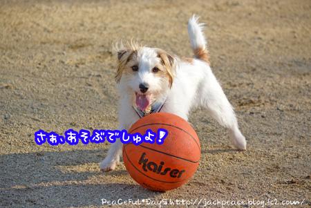 131225_yuasa1.jpg
