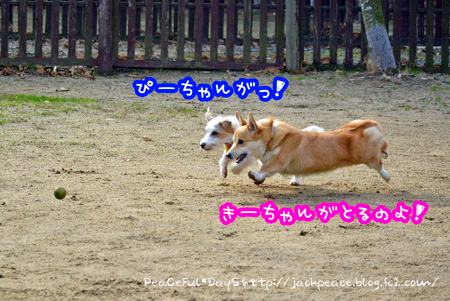 131230_yuasa1.jpg