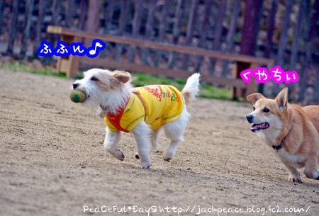 131230_yuasa2.jpg