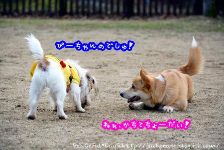 131230_yuasa4.jpg