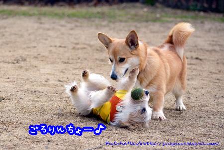 131230_yuasa5.jpg