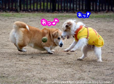 131230_yuasa8.jpg