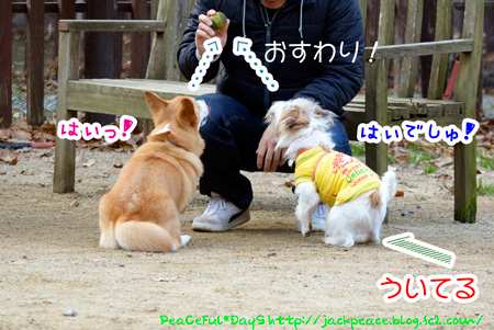 131230_yuasa9.jpg
