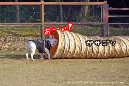 140102_yuasa.jpg