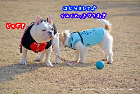 140102_yuasa4.jpg