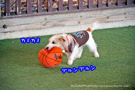 140106_yuasa.jpg
