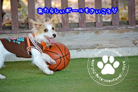140106_yuasa5.jpg