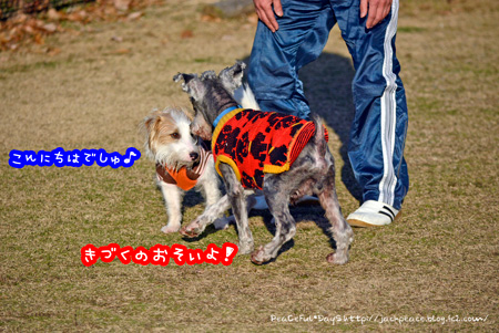 140106_yuasa7.jpg