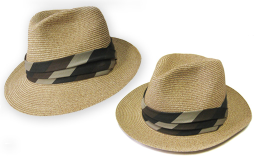 news120629_therumdiary_hat.jpg