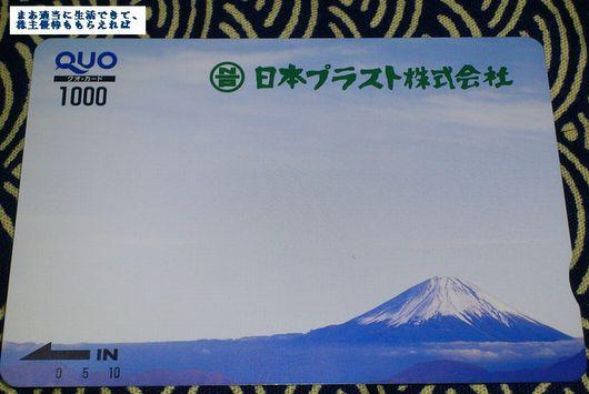 n-plast_2012.jpg