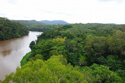 キュランダ・スカイレール・バロン川