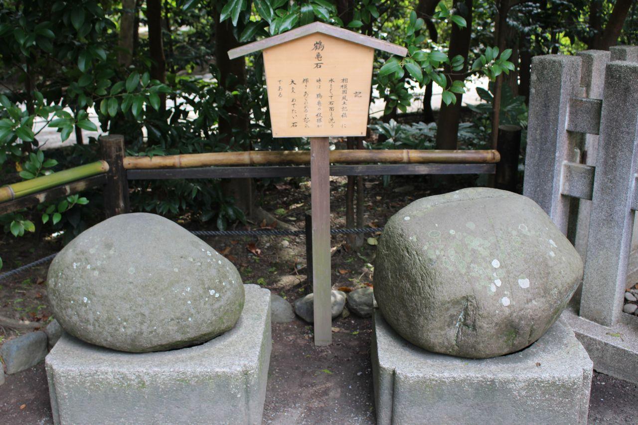 鶴岡八幡宮-35