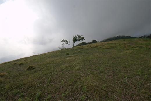 20120804-15.jpg