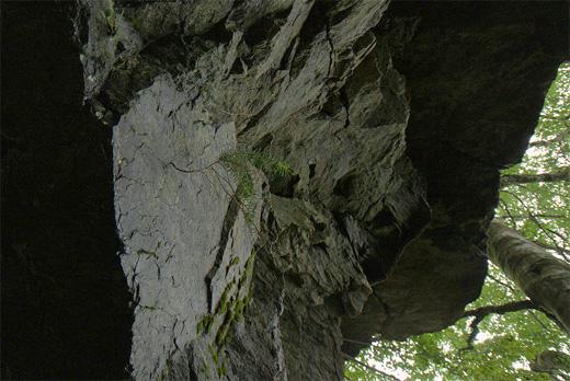 20120811-16.jpg