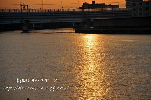 20140107124806a4d.jpg