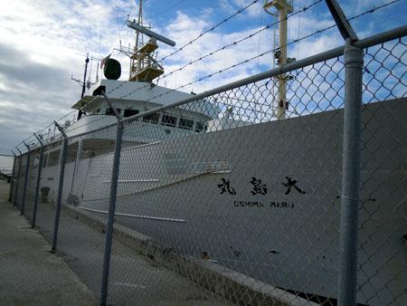 120312oshima2.jpg