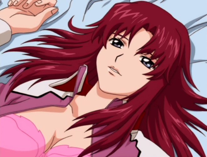 Gundam_Seed14_16wa_Flay_Allster.jpg