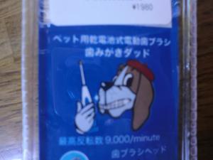 CIMG2780_convert_20120930114114.jpg