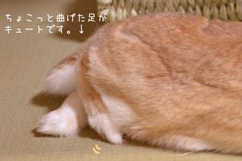 aa_DSC8005.jpg