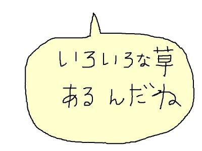 snap_monsan1122_201333142210.jpg