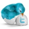 Twitter Button from twitbuttons.com