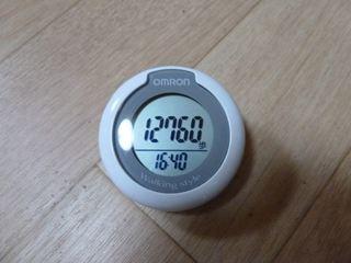 R-1006 099