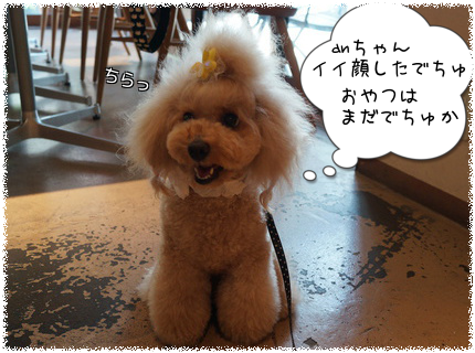 201208261942043aa.png