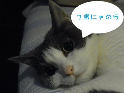 nana_20120806040858.jpg
